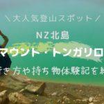 大人気登山スポットNZ北島マウントトンガリロへー行き方や持ち物体験記を紹介