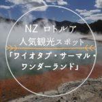 NZロトルア人気観光スポット『ワイオタプ・サーマル・ワンダーランド』
